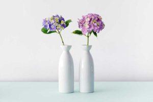 deux vases avec fleurs