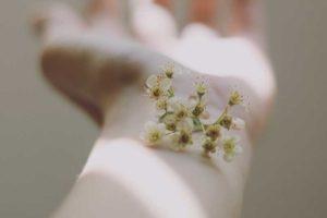 fleur sur un poignet